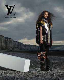 Luxury Brands specials in the Louis Vuitton catalogue ( More than one month)