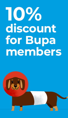 Offers from Bupa in the Sydney NSW catalogue