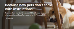 Bupa coupon ( More than one month )