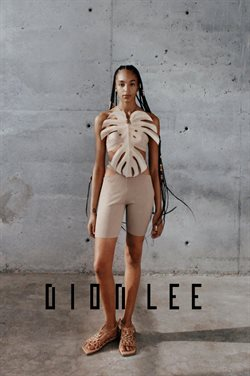 Dion Lee catalogue ( More than one month )
