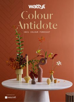 DIY & Garden specials in the Solver Paints catalogue ( More than one month)