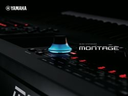 Yamaha Music catalogue ( More than one month )