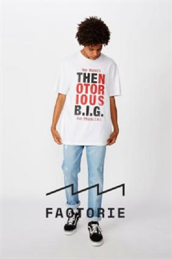 Factorie catalogue ( More than one month )