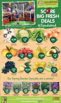 Spudshed specials in the Spudshed catalogue ( 2 days left)