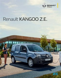 Renault specials in the Renault catalogue ( More than one month)