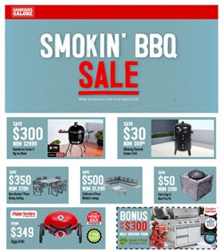Barbeques Galore catalogue ( 2 days ago )
